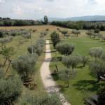 Panorama - Agriturismo La Piaggia di Assisi 3