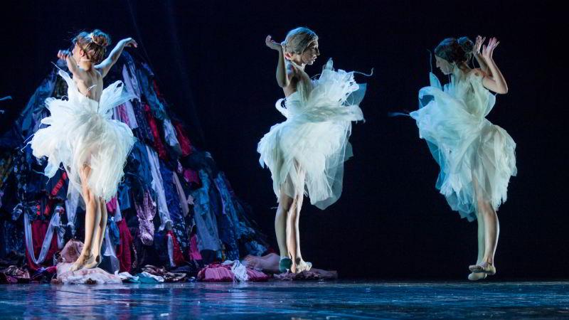 Il lago dei cigni, ovvero il canto al Teatro Morlacchi