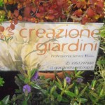 Creazioni Giardini - Ariel Coop