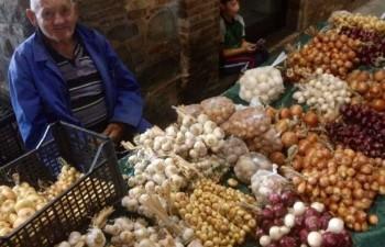 Festa della Cipolla di Cannara a Settembre