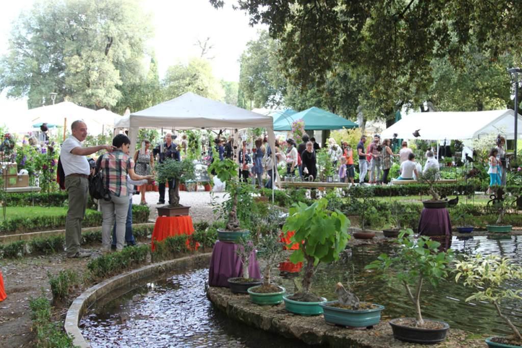 Perugia Flower Show_