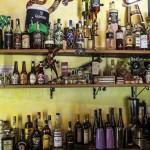 Ceiba Pub 5