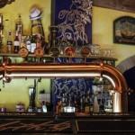 Ceiba Pub 9