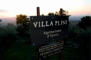 Logo Villa Plini