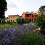 Residenza Bocci lavanda