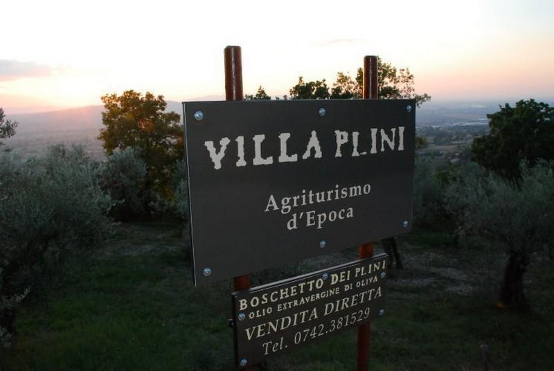 Villa Plini 1