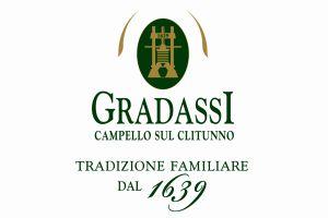 logo gradassi