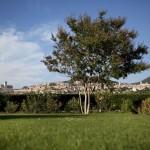 Hotel Bellavista Assisi 26
