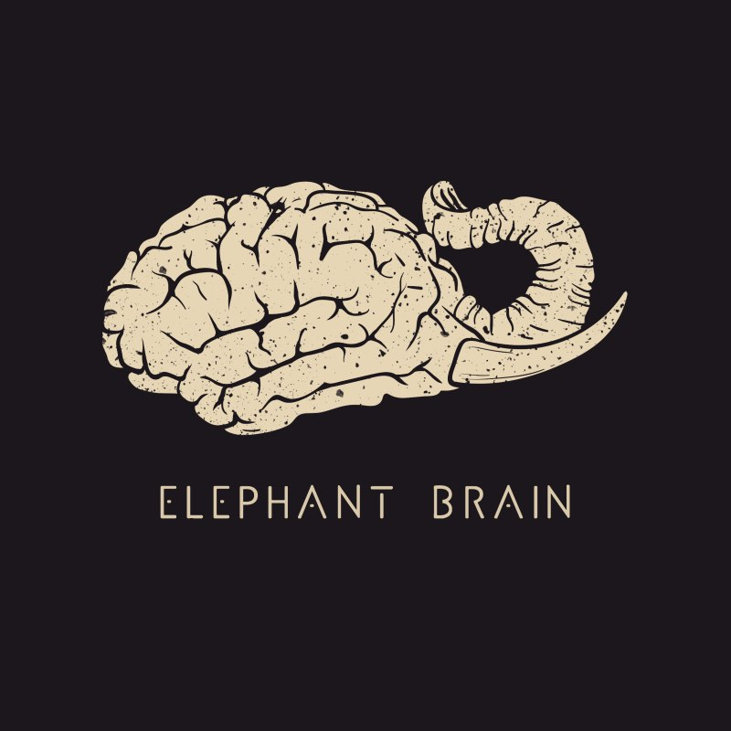 cover_Elephant Brain