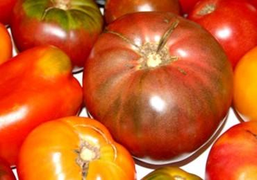 pomodori difettosi