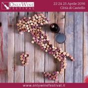 Only Wine Festival 2016 Spot 11