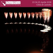Only Wine Festival 2016 Spot 7