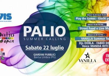 banner palio summer