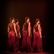 Ballet Flamenco Español (5)