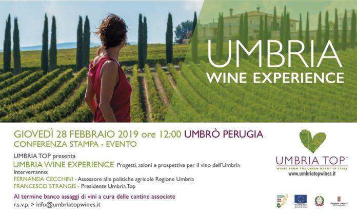 Umbria Wine Experience